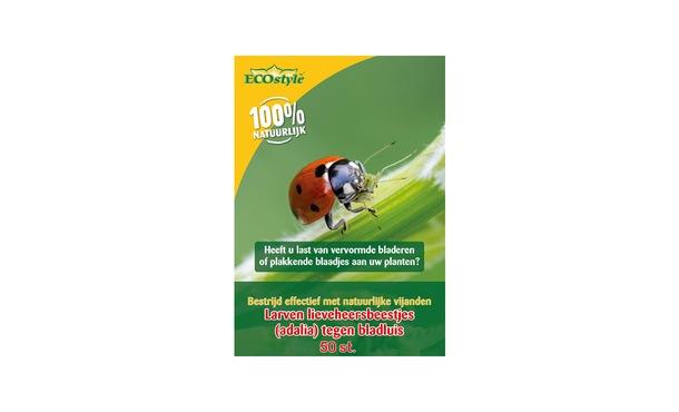 Larven lieveheersbeestje bladluis 50 st. • Gras en Groen Winkel