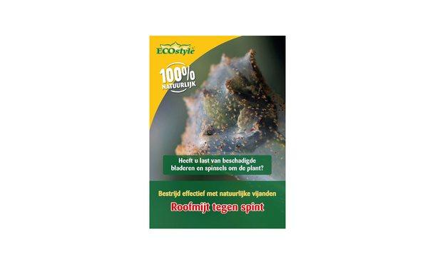 Roofmijt spint 1.000 st. • Gras en Groen Winkel