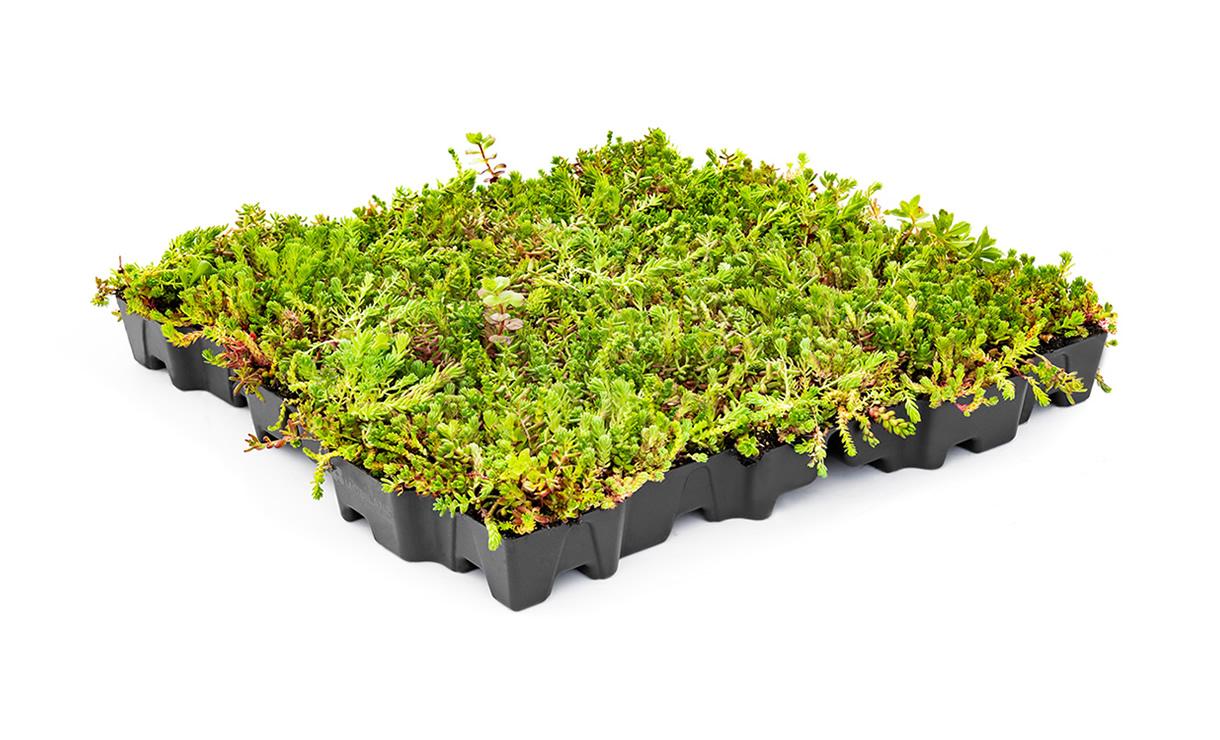 MobiRoof ECO • Gras en Groen Winkel