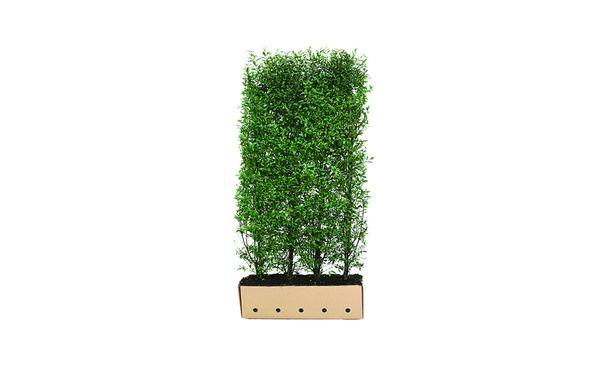 Onkruidwerenddoek 90 gr • Gras en Groen Winkel